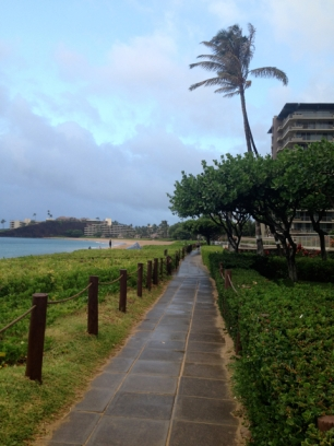 Hundreds can be found walking along beach path each evening