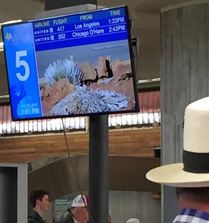 airport 2 - 1
