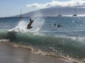 WAVE AIR