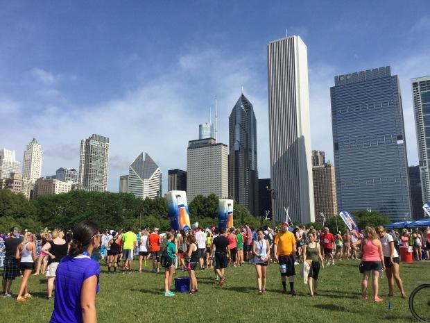 chicago park - 1